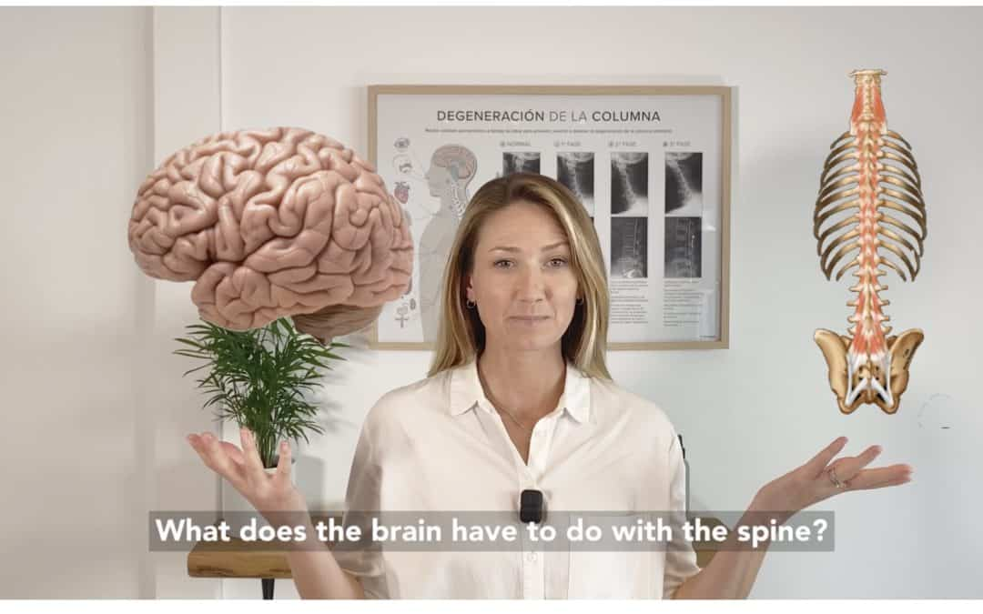 What does your spine have to do with your brain?